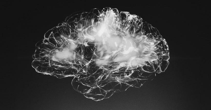 Neurosccience